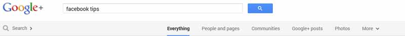 how to use google plus search
