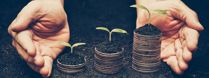 intrapreneurship and intrapreneurs