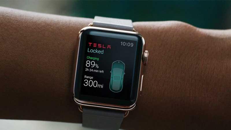 Tesla software app